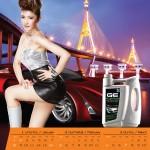 BCPlubricant2012_Thai